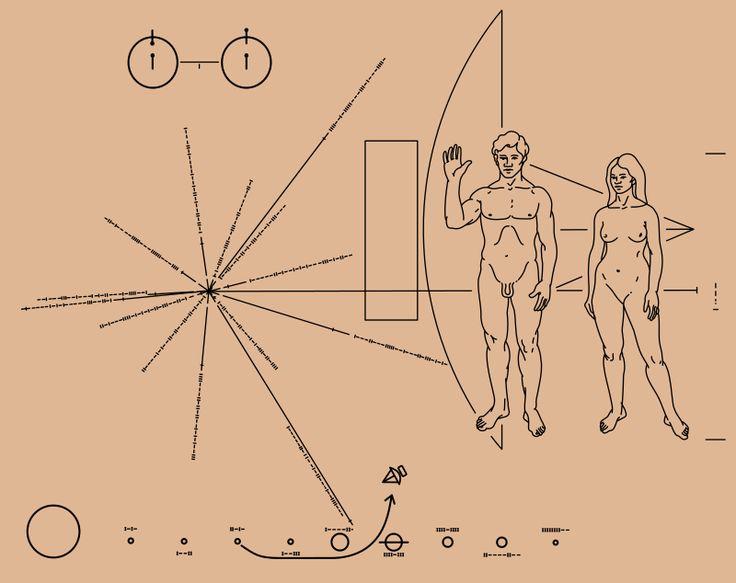 Płytka Pioneera czyli rysunek wysłany przez ludzkość w kosmos, by ewentualnym ufoludkom pokazać, jak wygląda człowiek. Zauważcie, że proporcje pani na rysunku daleko odbiegają od proporcji pań z okładek magazynów dla kobiet.