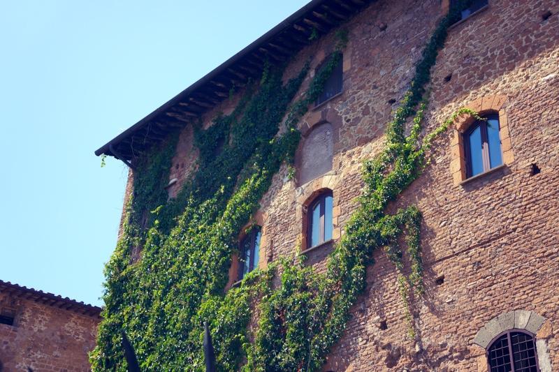 Uwielbiająca rzymską pogodę zieleń wgryza się w miasto.