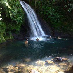 Dom kakao, zoo i dżungla