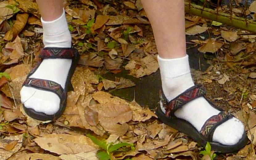 https://en.wikipedia.org/wiki/Socks_and_sandals